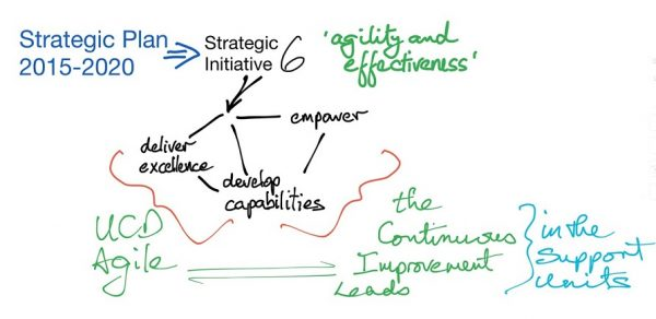 Introducing UCD's Continuous Improvement Leads